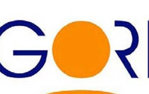GORI S.p.A