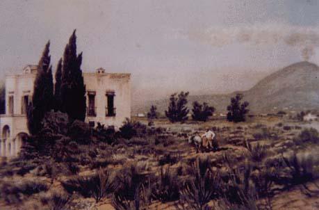villa delle G.