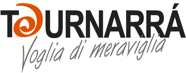 logo con pay off x VesuvioLive (1)