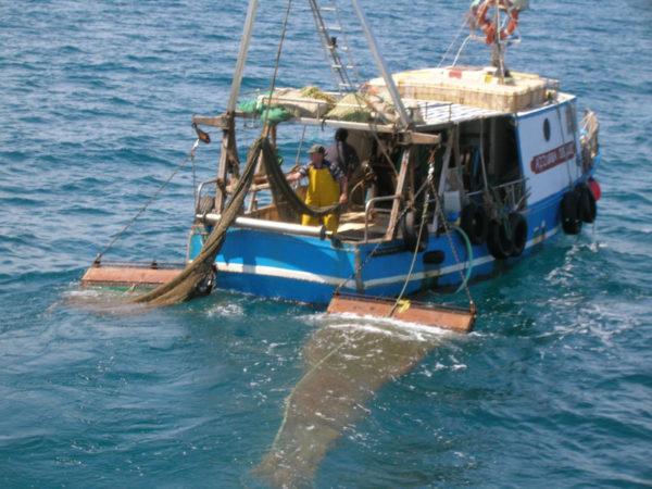 Sospensione di patente nautica, il primo caso a Torre del Greco