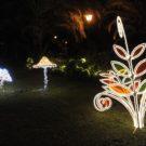 Il Giardino incantato illumina Pompei