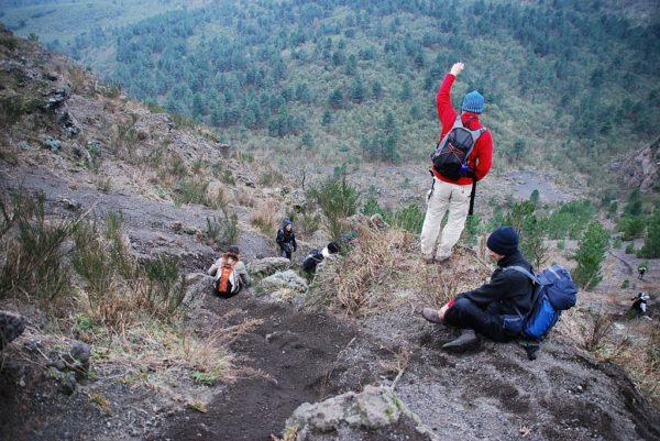 escursioni vesuvio natura