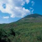 Parco Nazionale vesuvio