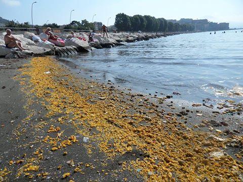 mare giallo, napoli, bagnanti,
