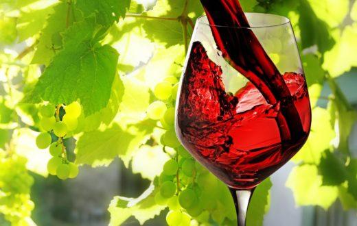 Meeting vino campano