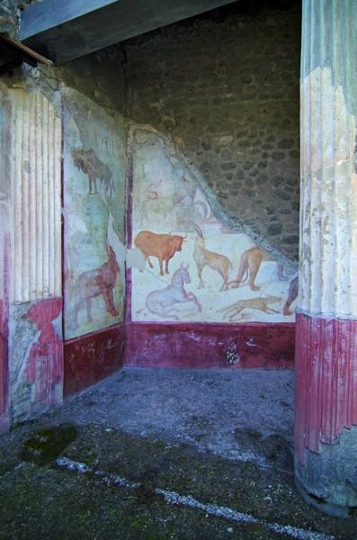 Scene con animali paradeisos dal peristilio Casa Romolo e Remo