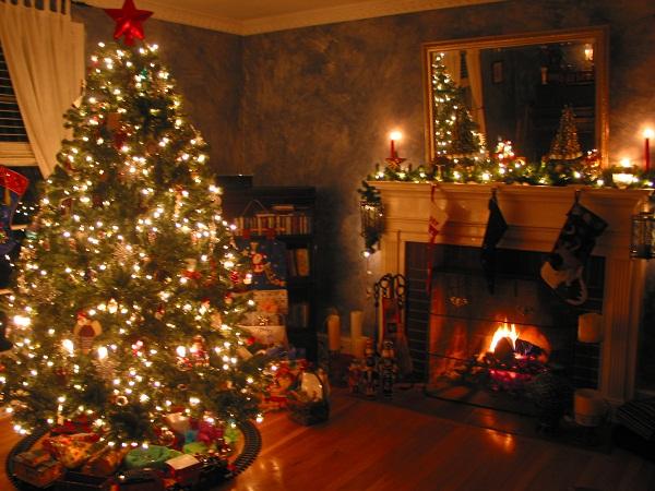 Immagini Di Natale Alberi.Alberi Di Natale Ecco Dove E Quando Gettarli A Napoli