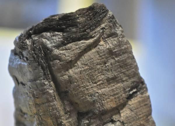 Papiro decifrato