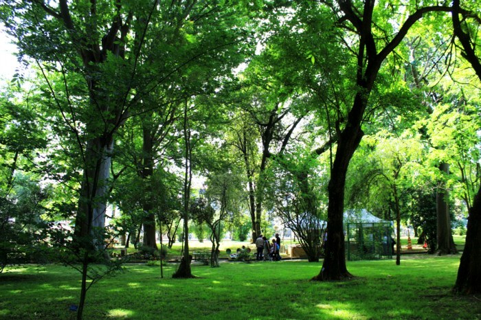 Real Orto Botanico