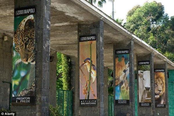 Ingresso Zoo di Napoli