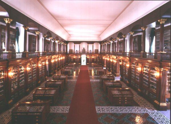 musei delle scienze naturali