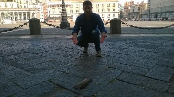 piazza del plebiscito pattumiera con topi morti a  terra