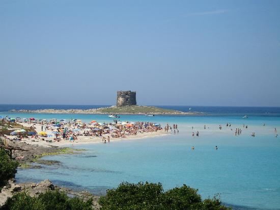 la-pelosa-beach-sardinia
