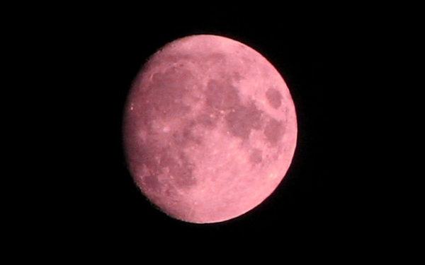 luna rosa