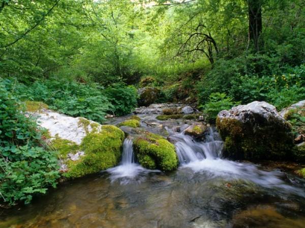 Tra i parchi nazionali pi belli d 39 italia uno in for Affitti cabina grande lago orso