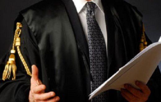 Professione avvocato