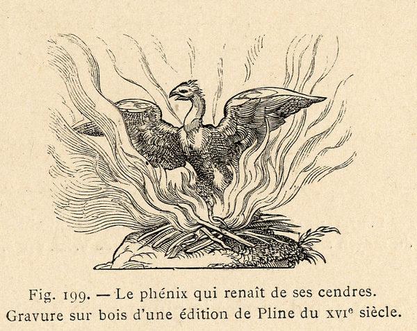 Fenice ceneri palingenesi raimondo di sangro principe di sansevero