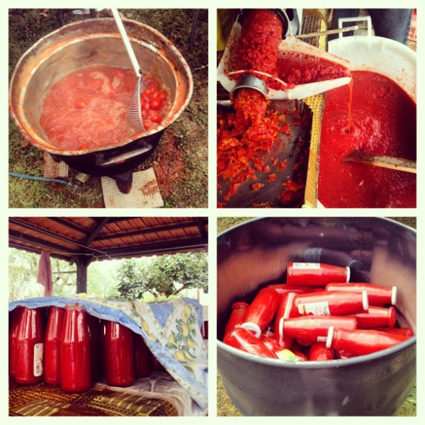 conserva-di-pomodori