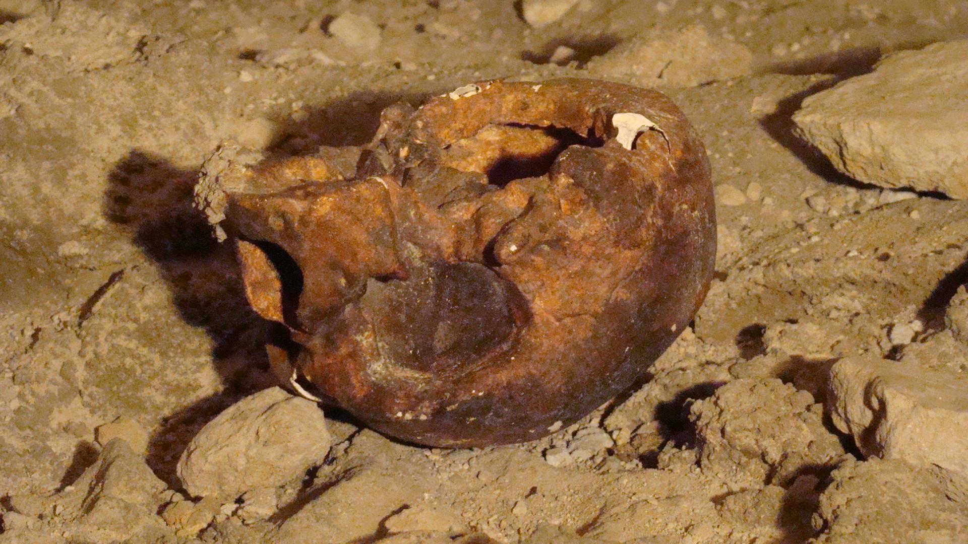 Scheletro Sant'Anastasia