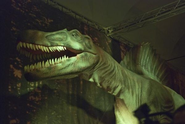 Days of the Dinosaur Real Albergo dei Poveri