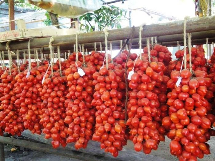 pomodori-del-piennolo