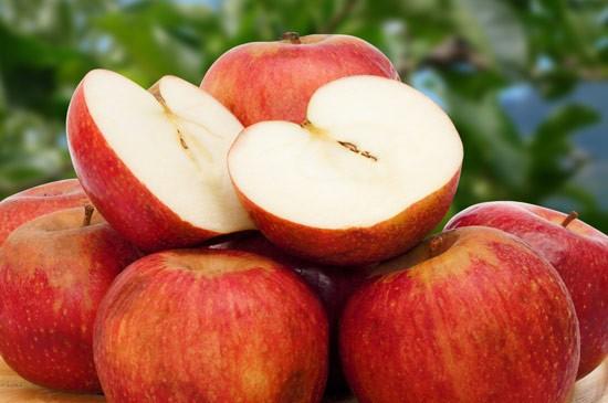 festa della mela annurca