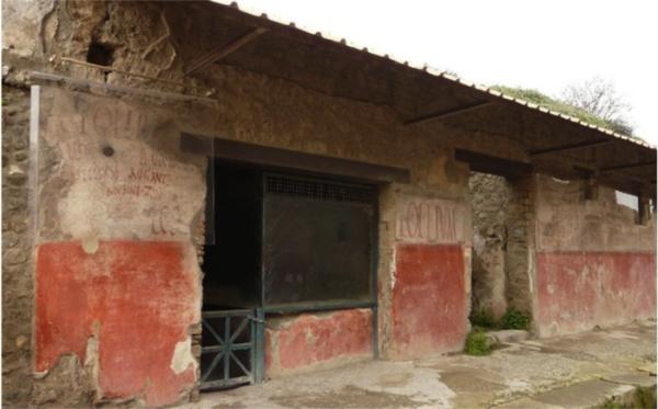 Asellina