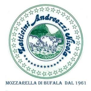 andreozzi logo