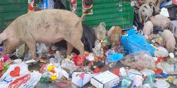 tassa sui rifiuti roma
