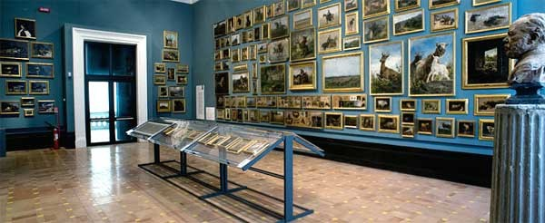 Galleria Accademia delle Belle Arti