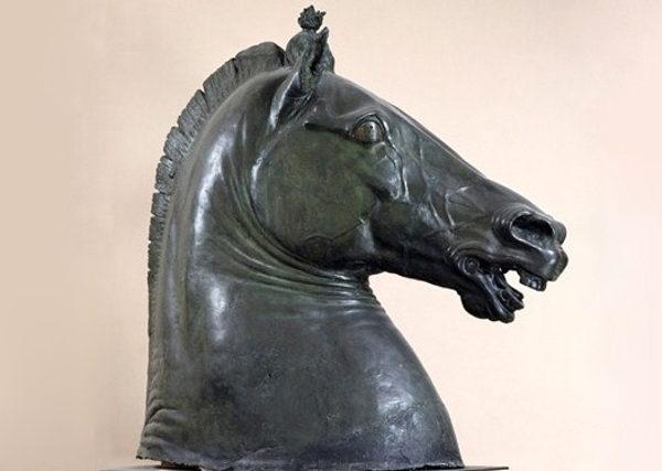 testa di cavallo napoli palazzo carafa