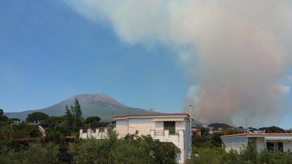 Incendio sul Vesuvio, la Guardia Forestale: