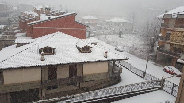 Neve Caserta