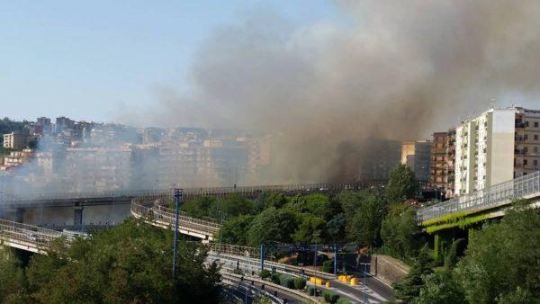 Napoli torna a bruciare: incendio al Vomero, vicino alla Tangenziale