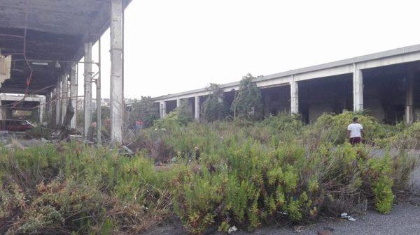 Napoli, ritrovato cadavere nell'ex mercato ortofrutticolo di Poggioreale