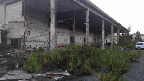 Macabra scoperta nell'ex mercato ortofrutticolo: trovato un cadavere