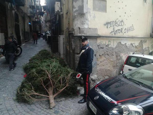 Napoli, Galleria Umberto I: l'albero di Natale dura un solo giorno