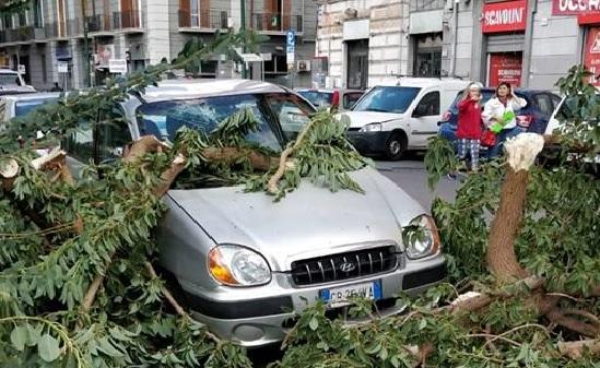 Allerta meteo a Napoli: chiuse tutte le scuole, i parchi e i cimiteri