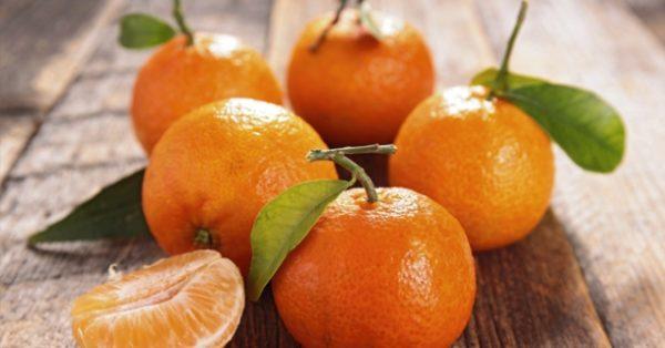 Storia del mandarino a Napoli
