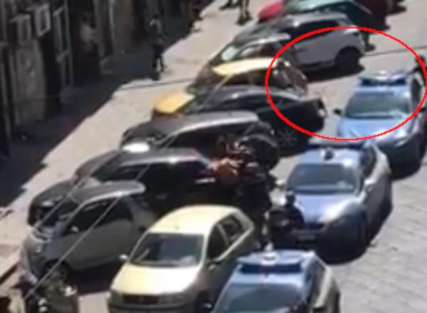 pitbull ucciso poliziotto napoli