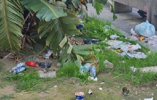 Piazza Dante rifiuti
