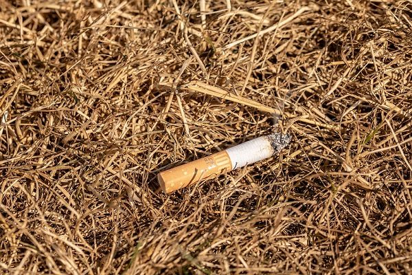 sigaretta, Casola di Napoli