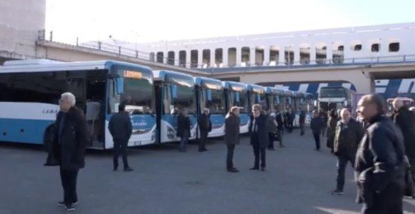 de luca autobus