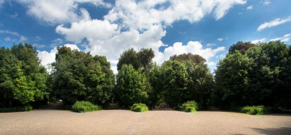 bosco capodimonte