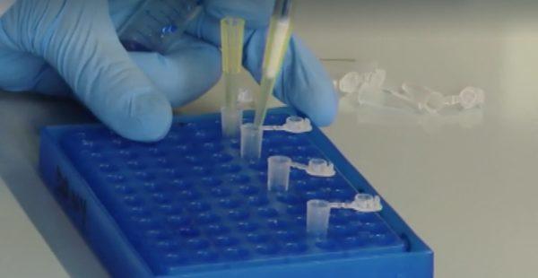 coronavirus test rapidi