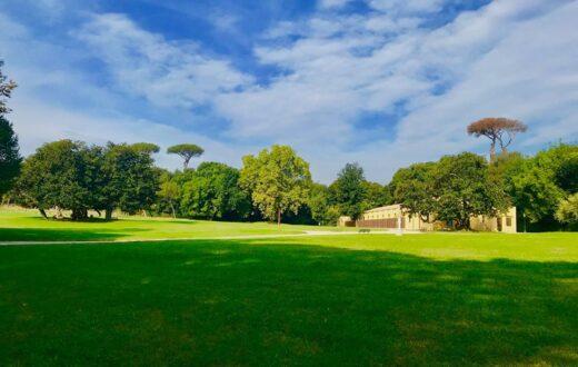 aree verdi e parchi