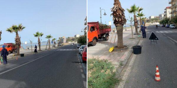 Decoro urbano a Torre del Greco: partiti i lavori di diserbamento e potatura