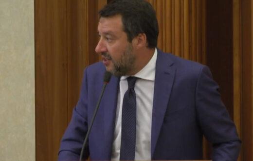 Salvini elezioni