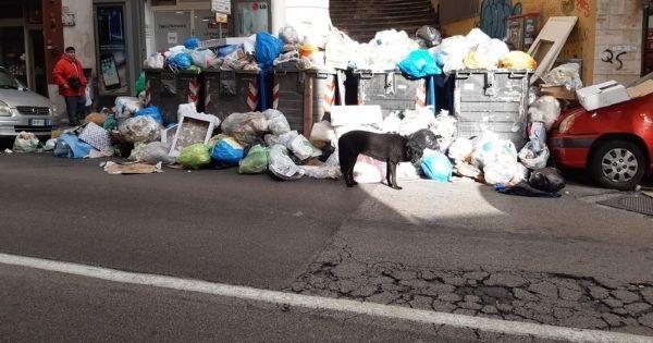 rifiuti roma caivano