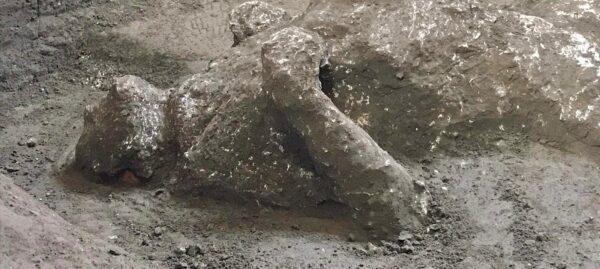 scoperta pompei uomo